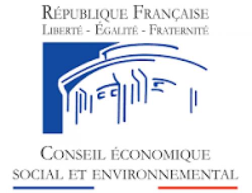 Consultation en ligne sur la réforme du Conseil Economique Social et Environnement