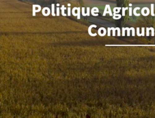Agrobusiness en Bretagne : c'est par où la sortie ?