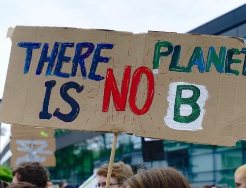 Environnement, climat : les syndicats de la FSU écrivent au Premier ministre